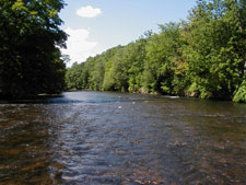 East Branch Delaware River Fly Fishing